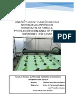 TFG DISEÑO Y CONSTRUCCIÓN DE DOS SISTEMAS ACUAPÓNICOS HORIZONTALES PARA LA PRODUCCIÓN CONJUNTA DE PECES DORADOS Y LECHUGAS.pdf