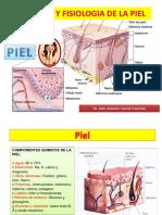 4 anatomia y fisiologia de la piel.pptx