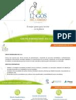 Presentacion Clientes Lagos del Cabrero Revisada LVB (1).pptx