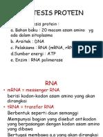 Sintesis Protein_elearning 7 Juni 2016