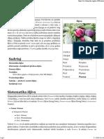 Šljiva — Vikipedija, Slobodna Enciklopedija