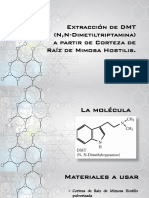 Dimetiltriptamina Extracción