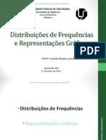 Distribuições de Frequências e Representações Gráficas