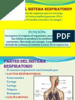 Diapositvasdelsistemarespiratorio Jlo 2010 121107190937 Phpapp02