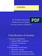 Anemia and Its Classification 1228038803337827 8