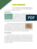 HELMINTOS.pdf