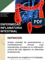 enfermedadinflamatoriaintestinal-131104124904-phpapp02