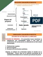Formulacion y Evaluacion de Proyectos estudio de Factibilidad