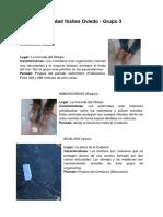 Trabajo Fósiles Oviedo