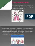 Expo Aparato Respiraorio