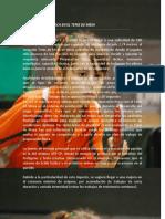 PREPARACIÓN FÍSICA TENIS.pdf