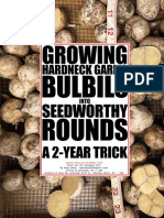 Revised Again -- Growing Hardneck Garlic Bulbils into Seedworthy Rounds