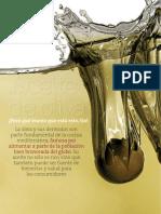 RC459 Estudio Calidad Aceite Oliva