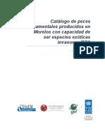 1.2 1 Catalogo Peces Ornato Morelos
