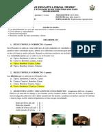 Evalc.iii. Cult Perenne y Vivero