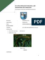 Informe n 01 Hidrologia Cuenca