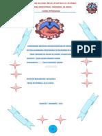254102294-Informe-Final-de-Petrologia-Corregido-1.doc