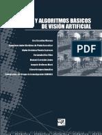 tecnicas-y-algoritmos-basicos-de-vision-artificial.pdf
