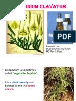 lycopodium-tubbovinum