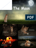 To the Moon- A Dogecoin Tale