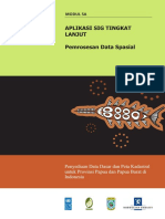 5A Pemrosesan Data Spasial Papua Barat