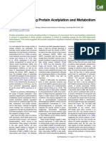 The Logic Linking Protein Acetylation and Metabolism