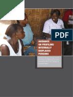 original_IDP_Profiling_Guidance_2008.pdf