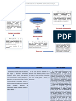 Epidemiologia de La Salmonella Enterica