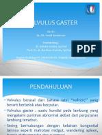 Volvulus Gaster