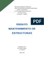 EnsayoEstructuras-JorgeTorres