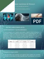 Electrofisiologia (Resumida)