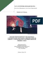 Microgenesis_de_limite_y_continuidad_en.pdf