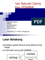 Perdarahan Saluran Cerna Bagian Atas (PSMBA)