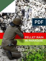 Pellet Rain in Paradise
