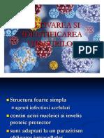 Cultivarea Si Identificarea Virusurilor