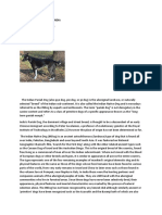 common_dog_breeds_of_india.docx
