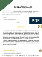 Modelo Informe PPP