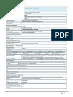 Formato Invierte pe.pdf