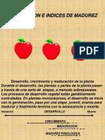 5. Indices de Cosecha[1]