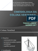 aulacolunacinesiologia-100830135555-phpapp01.pdf