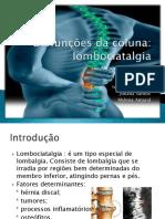 disfunesdacoluna1-121217083844-phpapp02