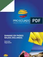 ESTUDIO DE BANANO ECUATORIANO EN HOLANDA