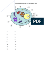 animal cell structure (online).doc