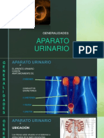 APARATO-URINARIO