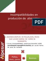 PRESENTACION FABRICACION DE ALIMENTO