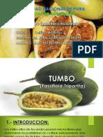 Tumbo Julio