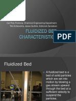 Fluidized Bed Characteristics 2