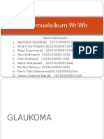 29933_GLAUKOMA PPT