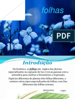 folhas-131005220503-phpapp02