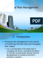 Fin 3n Financial Risk Management
